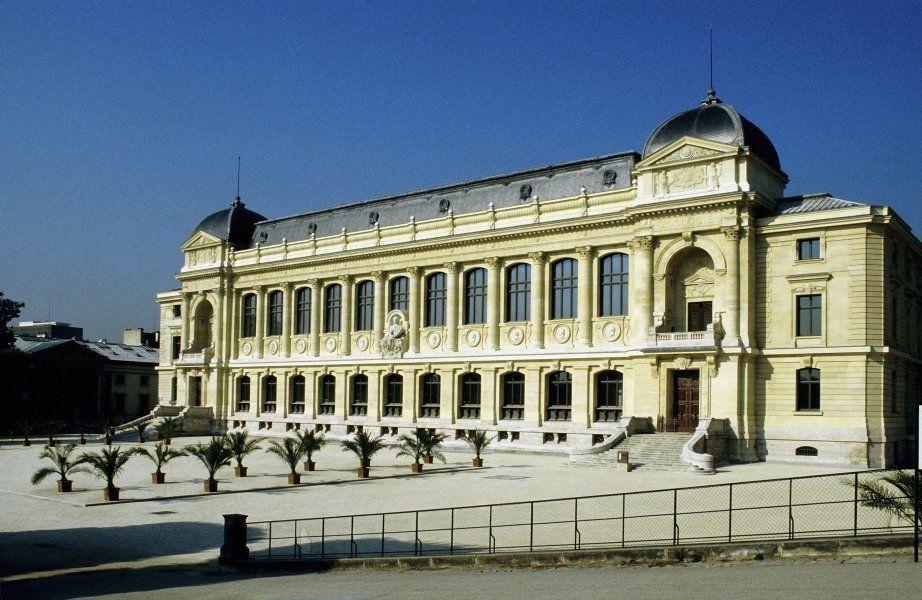 Viajar a Paris - Museo Nacional de Historia Natural de París