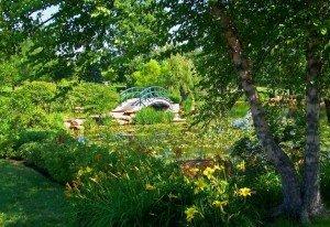 El Jardín de Agua, Giverny