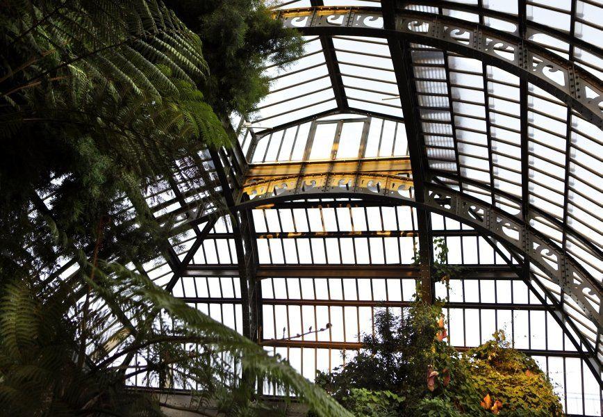 Jardin Des Plantes © MNHN Manuel Cohen